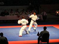 Karate 2011 EM und Karate Team 053.JPG