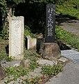 Katsuraojyo.jpg