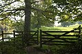 Kissing gate by the Dart - geograph.org.uk - 1008227.jpg