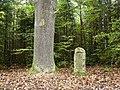 Kleindenkmal, Försterstein ab 1801 (1907), Förster Eiche, Darunter 16 Försternamen von 1801-2000, die, bis der Platz ausging, immer wieder ergänzt wurden. 1907 vom Forstamtsleiter Ludwig Volz gestiftet, der von 19 - panoramio.jpg