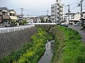 Koinokubo Higashimachi, Nara, Nara Prefecture 630-8137, Japan - panoramio.jpg