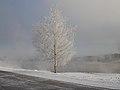 Kolomenskoe in white - Dec12 - 02 snow.jpg