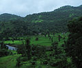 Konkan Railway - views from train on a Monsoon (18).JPG