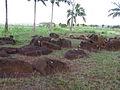 Kukaniloko Birthing stones.jpg
