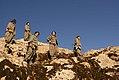 Kurdish PKK Guerilla (11495868844).jpg