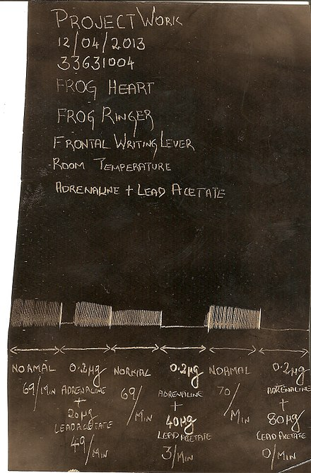Kymographic recording of the effect of lead acetate on frog heart experimental set up. Kymographic recording of the effect of lead on frog heart..jpg
