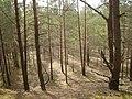 Līksna Parish, LV-5456, Latvia - panoramio - alinco fan (2).jpg