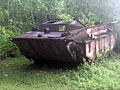 LVT-2 rusting on Peleliu in 2001.JPEG