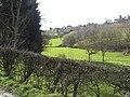 La vallée de la Julienne à Housse, Blegny.jpg
