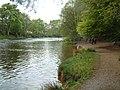 Lady Mary's walk - geograph.org.uk - 171034.jpg