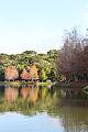 Lago São Bernardo - São Francisco de Paula - RS -BRASIL.jpg
