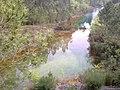 Lagoa Midões - panoramio (1).jpg