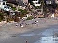 Laguna Beach , crescent bay - Patrick Nouhailler - panoramio.jpg