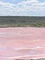 Lake Magadi-4.jpg