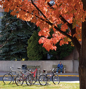 Thunder Bay Campus in the fall