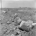 Landschap bij Caesarea met archelogische resten waaronder delen van zuilen, Bestanddeelnr 255-1483.jpg