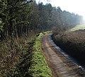 Lane past School Wood - geograph.org.uk - 688083.jpg