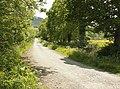 Lane to Brewham Lodge Farm and Tree Tops Farm - geograph.org.uk - 1350850.jpg