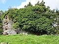 Le Plessis-Grimoult ,vestige de mur d'enceinte fortifiée en arête-de-poisson.JPG