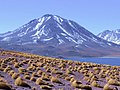 Le Volcan Miscanti et la Laguna Miscanti.jpg