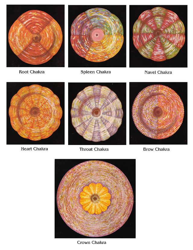The Chalice of Wisdom - Part 2 - Page 3 640px-Leadbeater%27s_Chakras_Pictures