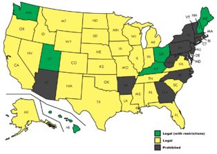 Payday Loans In States That Ban It