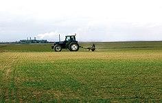 Les Plantes Cultivades. Cereals. Imatge 241.jpg
