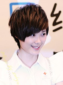 Li Yu Chun Chris Lee at her Fans Charity Fund.jpg