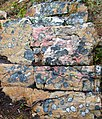 Lichen Covered Rock (7974527616).jpg