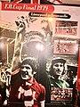 Liverpool FC (Ank Kumar) 20.jpg