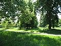 London, Hyde Park, The Ring (nördlich) - panoramio.jpg