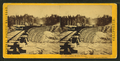 Long Ravine Bridge near Colfax. (Train crossing), by Hart, Alfred A., 1816-1908.png