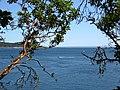 Looking to Juan de Fuca strait. READ INFO IN PANORAMIO-COMMENTS - panoramio.jpg
