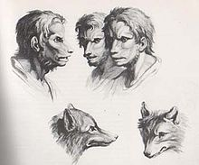 horror  What is the origin of werewolf fiction  Science