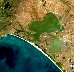 "Hindmarsh Island bridge controversy - One of the pivotal assertions of ""Secret Women's Business"" was that the geography of Hindmarsh Island resembled the female reproductive organs. Hindmarsh Island can be seen in the centre-left of the image."