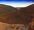 Loyalsock State Forest Lookout.jpg