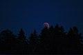 Lunar Eclipse 2018 SG 007 (29823675938).jpg