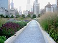Lurie Garden Path facing north.jpg