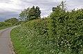 Lurking signpost - geograph.org.uk - 436830.jpg
