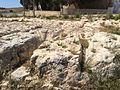 Mġarr cart ruts 21.jpg