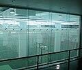 MCG Nets.JPG
