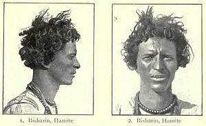 Hamitic hypothesis african history difference between personal essays and research papers