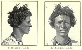 Hamites - Bisharin man with classic Hamitic physical traits, from Augustus Henry Keane's Man, Past and Present (1899).