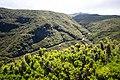 Madeira - ER110 Plateau Route Levada das 25 Fontes (48127409328).jpg