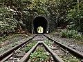 Magas-bakonyi vasútvonal (vasúti pálya, épületek, millenniumi emlékmű, alagutak, hidak, támfalak, omlásvédők) (17952. számú műemlék) 13.jpg