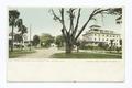 Magnolia Avenue and Hotel Des Plano, Daytona, Fla (NYPL b12647398-67580).tiff