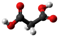 Malonic acid molecule ball from xtal.png