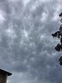 Mammatus Cloud.PNG