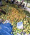 Mango from Chapainawabgonj 04.jpg