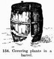 Manual of Gardening fig154.png